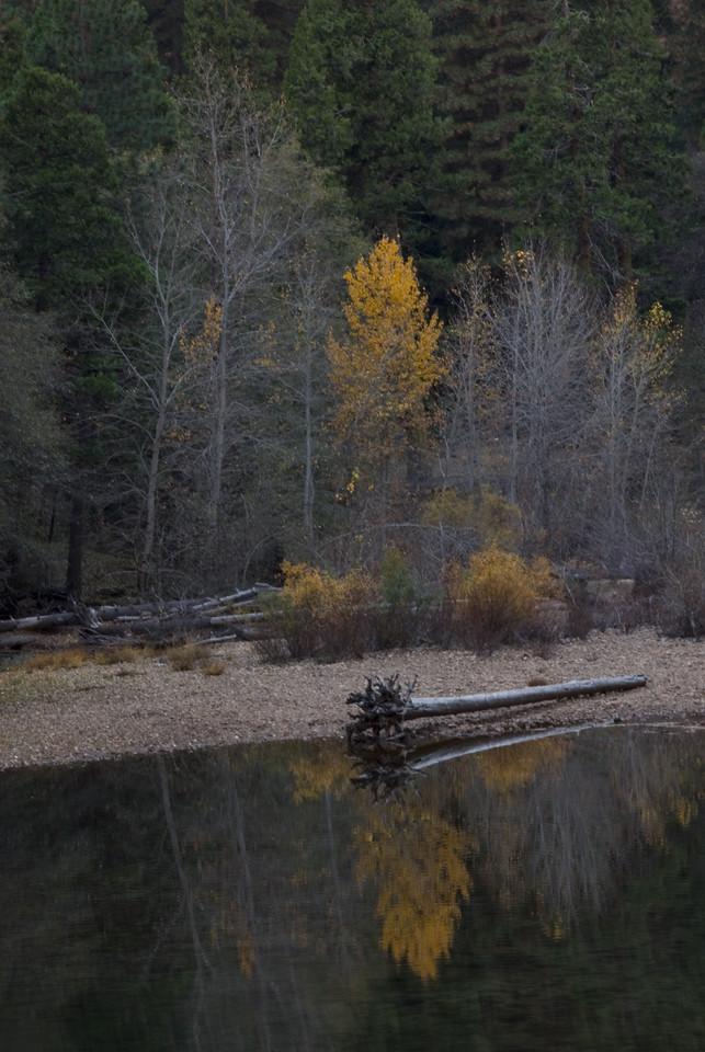 Yosemite in the Fall 2006