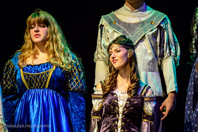 Madrigal_Feast_2015 (213 of 238)