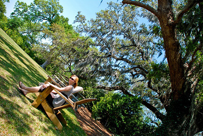 Hold On  |  2008  Arlie Garden  |  Wilmington, NC