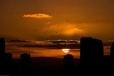 Burnt Sky  |  2008  San Diego, CA