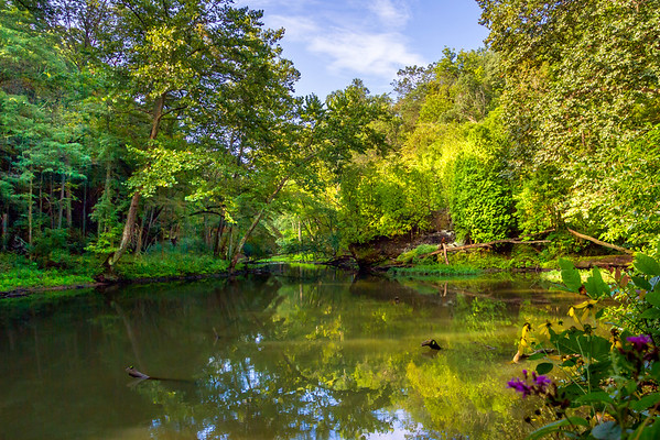 The Morning Light Along The Little Miami River At John Bryan State Park In Yellow Springs Ohio 8-28-2016