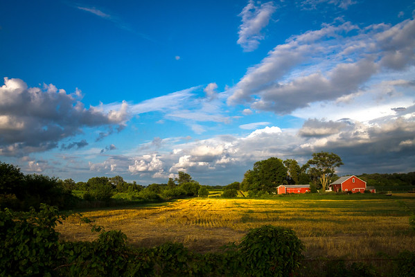 Old Barns In The Evening Light In Miami County Ohio 7-14-2014