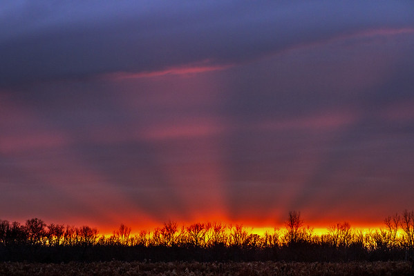 Sunset In The Country - At Carriage Hill Metropark Huber Heights Ohio 11-30-2016