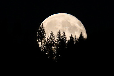 Tom's Moon