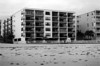 Sandy Shore's - Maderia Beach, Florida<br /> ©2004 Thomas Stanziale. All rights reserved.