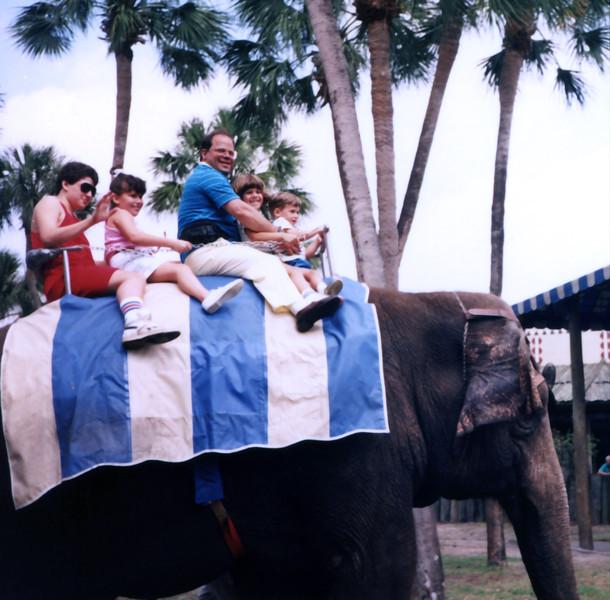 Busch Gardens, Tampa, FL