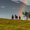 Regnbuehester på Tisnes