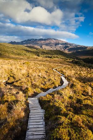 Boardwalk enters Whakapapaiti Valley, Mount Ruapehu, Tongariro National Park, Central North Island