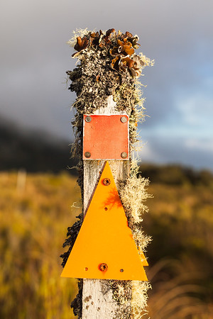 Lichen covered tramping track marker post, Mount Ruapehu, Tongariro National Park, Central North Island