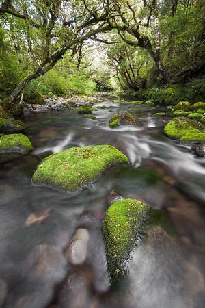 Mangahuia Stream, Tongariro National Park