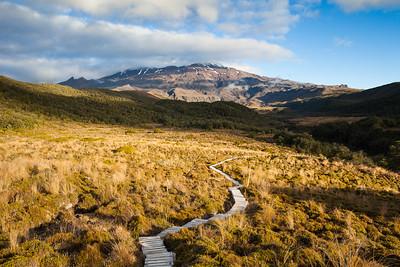 Boardwalk enters Whakapapaiti Valley on slopes of Mount Ruapehu, Tongariro National Park, Central North Island