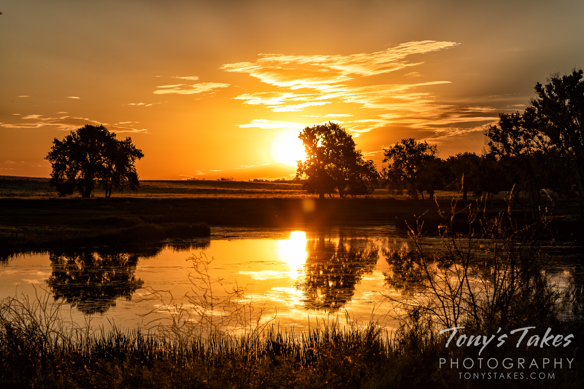 Father's Day sunrise offers a golden glow