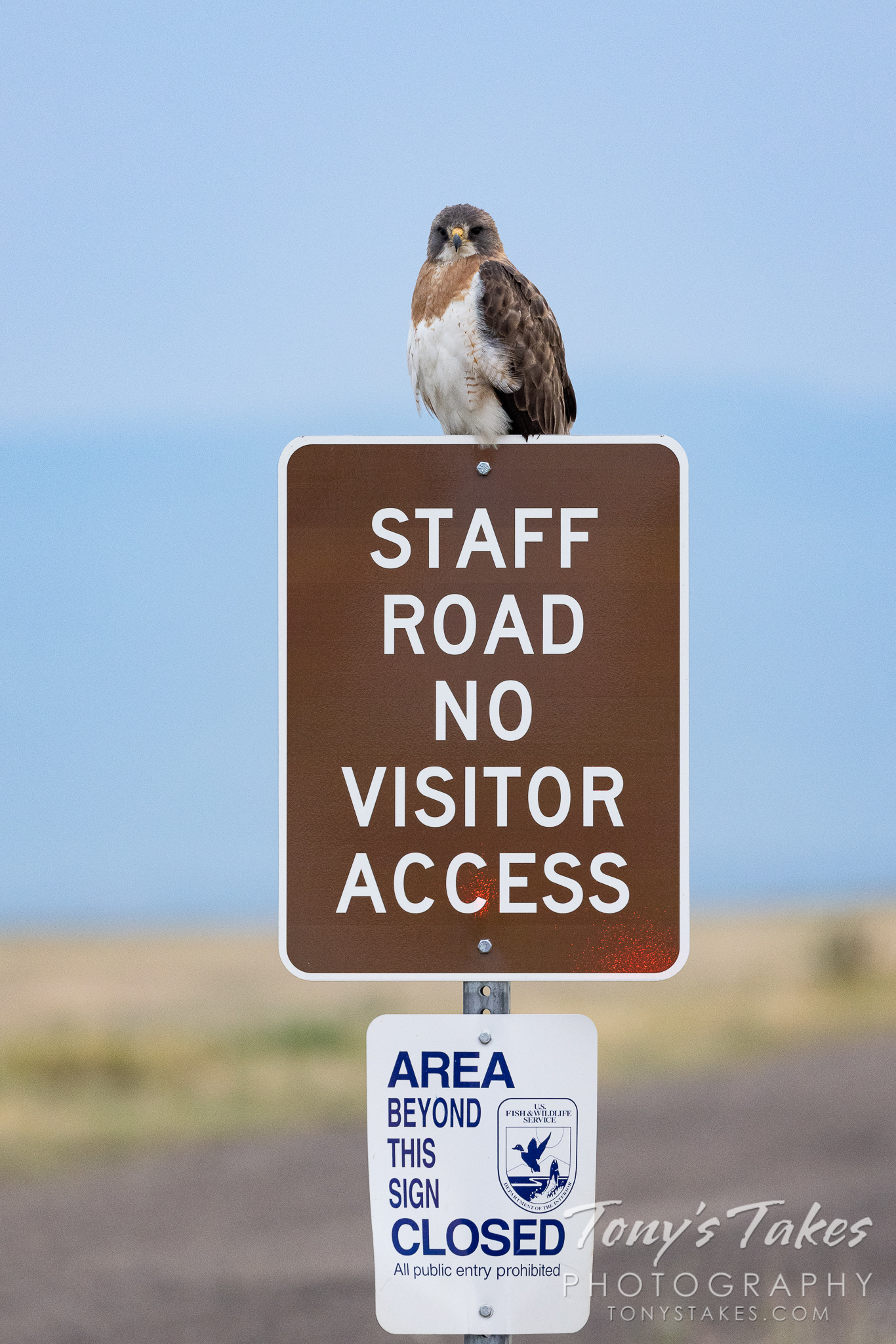 Rocky Mountain Arsenal National Wildlife Refuge gets serious about enforcement