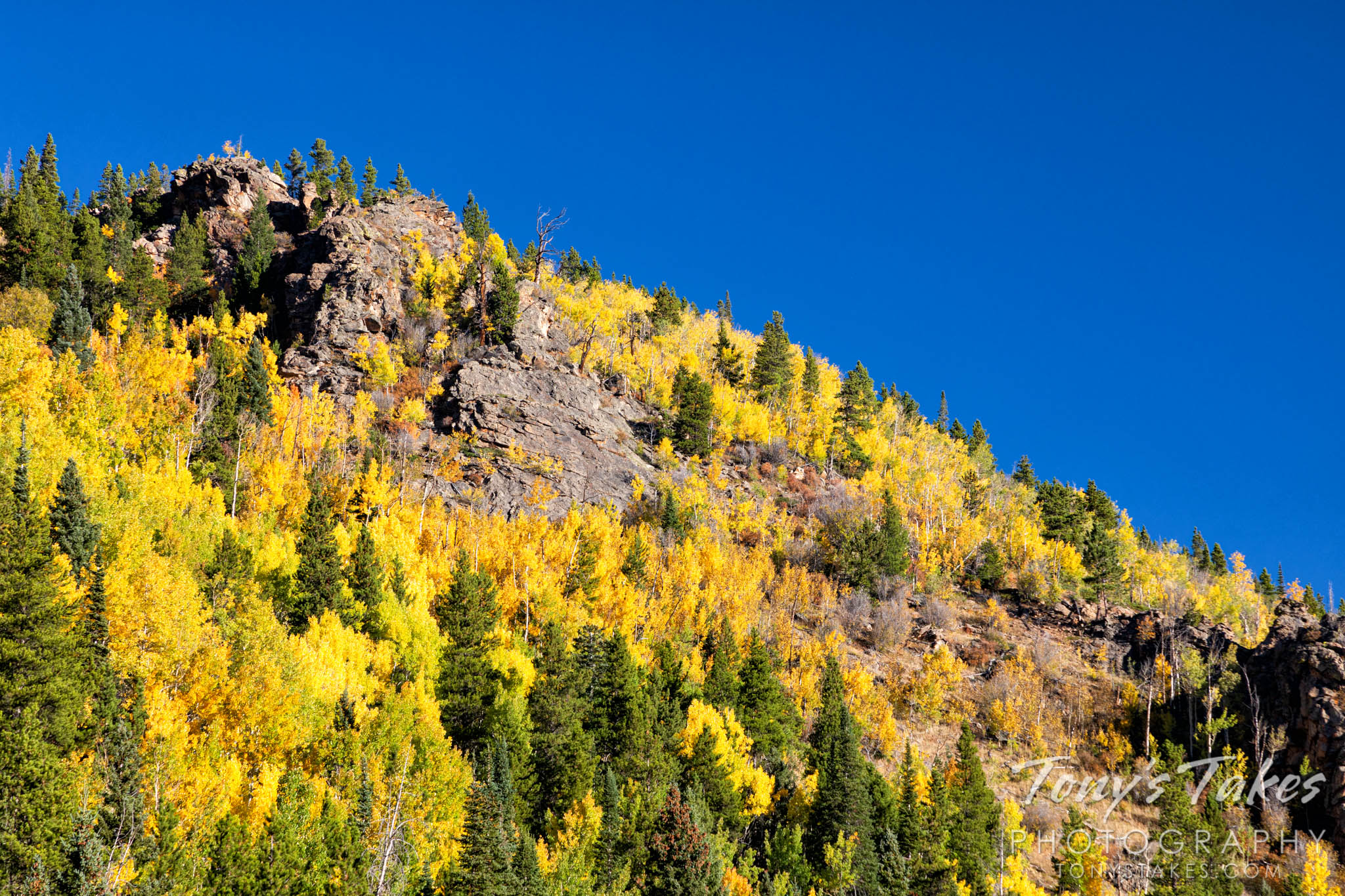 Fall colors in Hidden Valley
