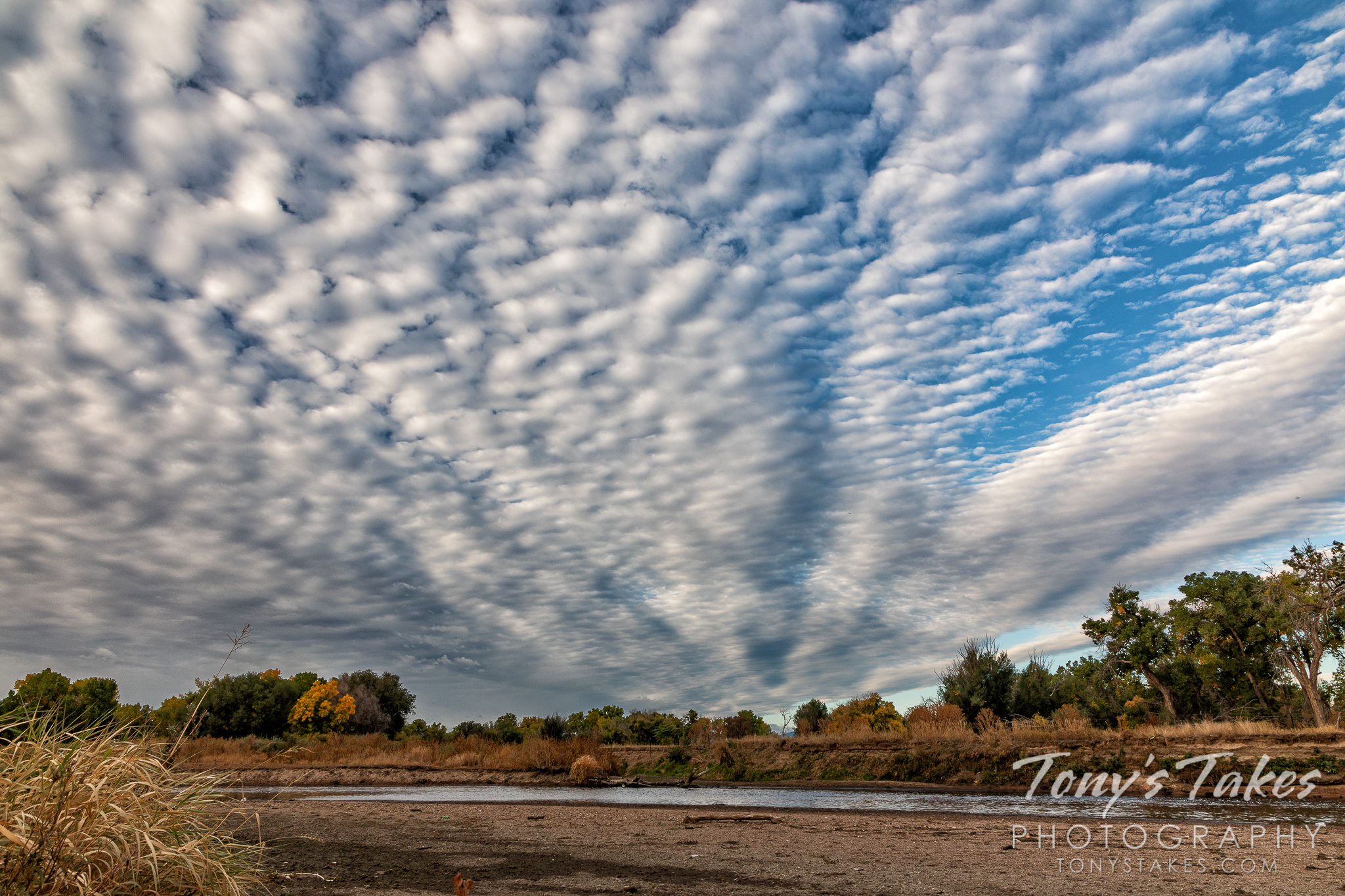 Cool clouds along the river