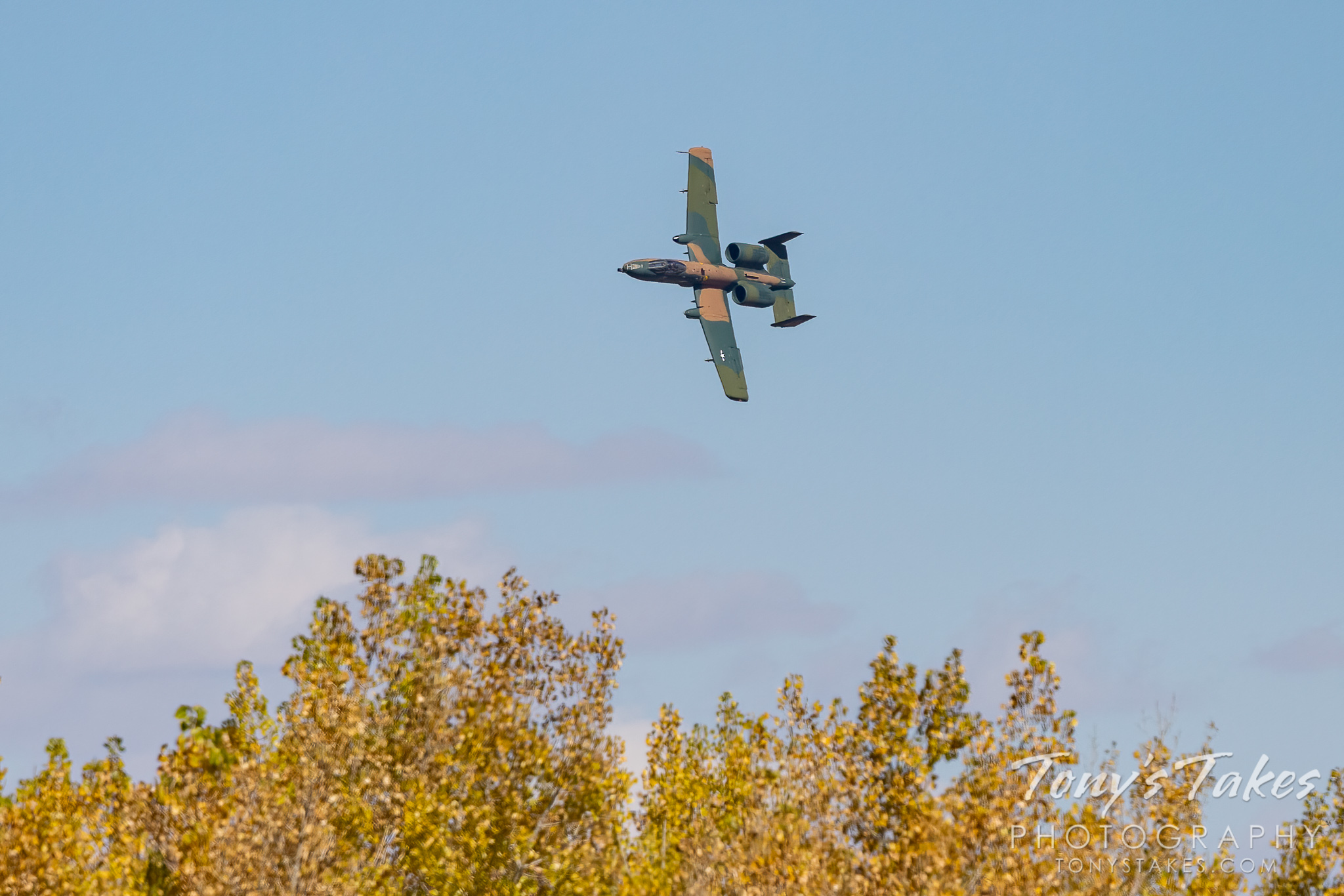 An A-15 Thunderbolt and fall foliage. (© Tony's Takes)