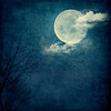 Blue Moon_Square