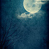 Blue Moon_Poster