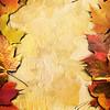 Autumn Framing_Poster