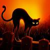 Cat Stretch_Square