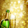 Champagne Surprise_Portrait