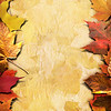Autumn Framing_Poster Long