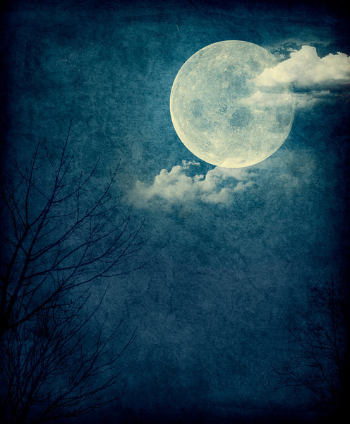 Blue Moon_Portrait