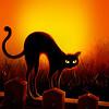 Cat Stretch_Poster