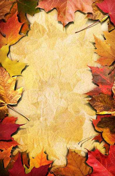 Autumn Framing_Poster