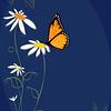 Butterfly Secrets_Poster