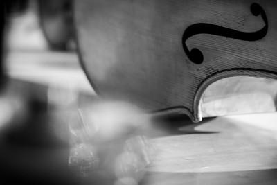 Violoncello detail
