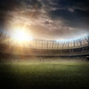Ashe-Design-Fenced-in-Soccer-16x20-without-Fence-and-WO-fog-jpg