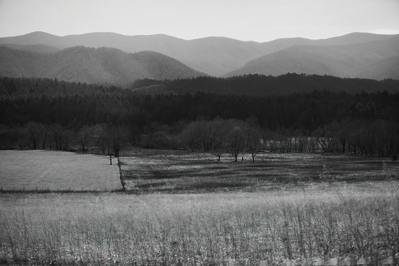 13 March 2009.  Cades Cove, TN.