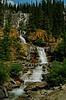 Tangle Falls, Jasper NP  # 102-181