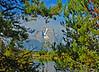 Mt. Moran, GTNP  # 170-265