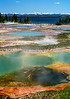 West Thumb Geyser Basin  # 10ed1