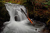 Little Multnomah Falls  # 72-123