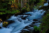 McKenzie River, Oregon # 180-055