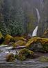 Wahclella Falls  # 99-125