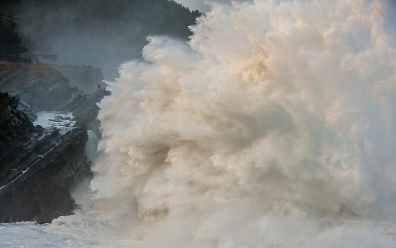 Big Wave Day. Shore Acres State Park, Oregon.
