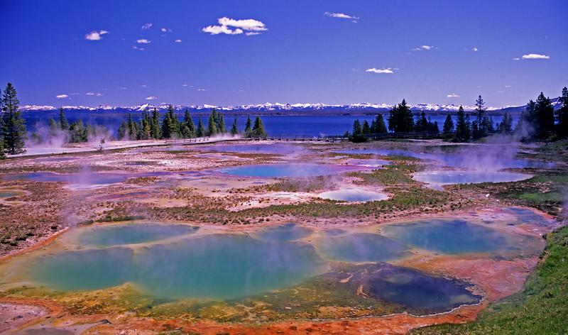 West Thumb Geyser Basin, Yellowstone  # 6ed1