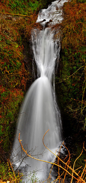 Sheppard Dell Falls # 152