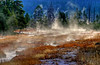 Lower Geyser Basin, Yellowstone # 34-40HDR