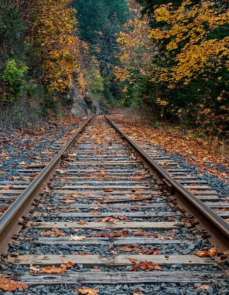 """Tracks"", Mapleton, Oregon # 2ed1"