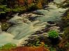 McKenzie River  # 131-10/9/11ed4