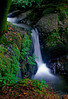 Upper Torc Waterfall, Ireland # 22-84