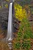 Latourell Falls # 32-121