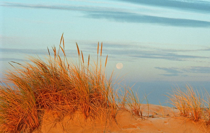 Moonset-Sunrise, Oregon Dunes ed8
