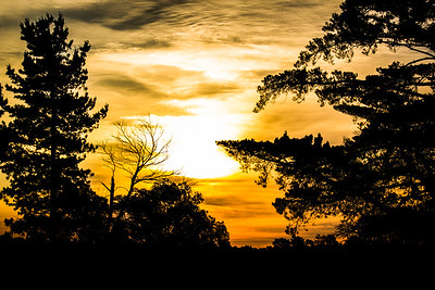 Colden Sunset