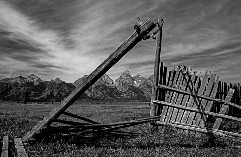 Mormon Row, Tetons  # 81013ed1